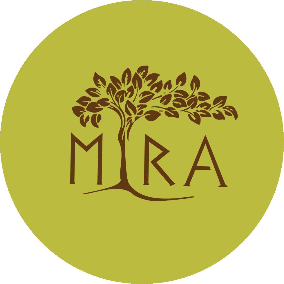 Asset 1@mira